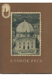 A török Pécs - Szabó Pál Zoltán - Régikönyvek