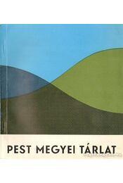 Pest megyei tárlat - Tóth Antal, D. Fehér Zsuzsa - Régikönyvek