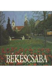 Békéscsaba - Tóth József - Régikönyvek