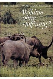 Wildnis ohne Hoffnung? (Remény nélküli vadon) - Ursula és Wolfgang Ullrich - Régikönyvek