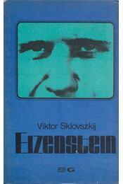 Eizenstein - Viktor Sklovszkij - Régikönyvek