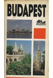 Budapest Grand Guide - Wellner István - Régikönyvek