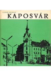 Kaposvár - Zádor Mihály - Régikönyvek