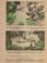 Kaland az ősvadonban. - Régikönyvek